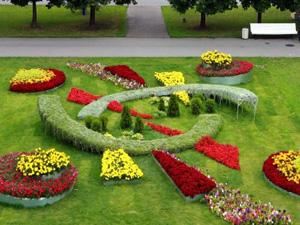 Выбор растений при проектировании ландшафтного дизайна